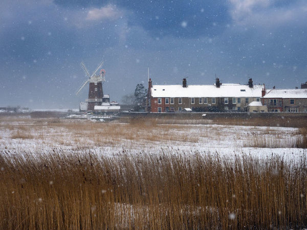 Cley Mill and Reedbed in winter snow storm, Norfolk, UK, February