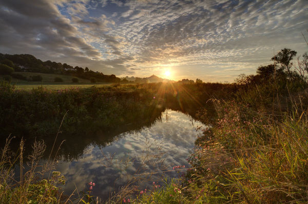 River Brue, at sunrise with Glastonbury Tor in background, Somerset, UK, August
