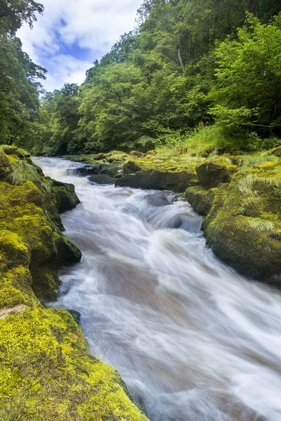 The Strid, River Wharfe, slow shutter speed showing movement of the water, Bolton Abbey Estate, Wharfedale, North Yorkshire, August 2015
