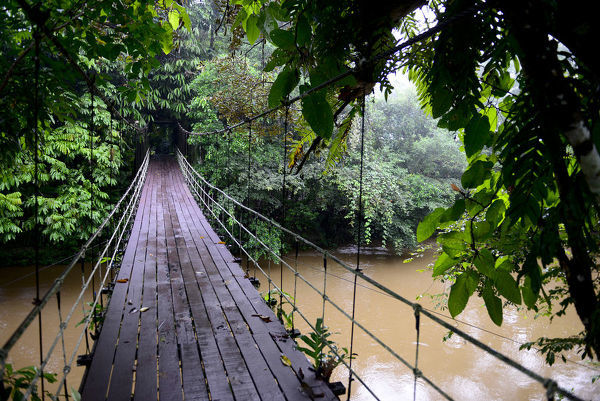 Suspension bridge across the river, entrance to Gunung Mulu National Park UNESCO Natural World Heritage Site, Malaysian Borneo