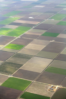 latest highlights/highlights 2009/aerial view cultivated farmland strips seville