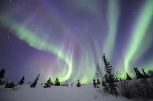 latest highlights/highlights 2009/northern lights aurora borealis northwest territories