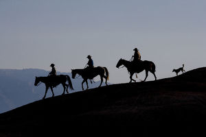 latest highlights/highlights 2009/silhouette cowboys dog riding ridge flitner ranch